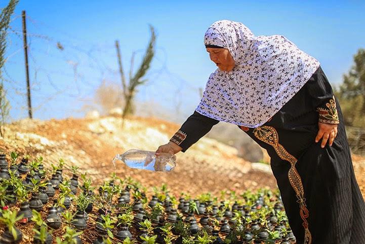 اعتراض عملی زن فلسطینی